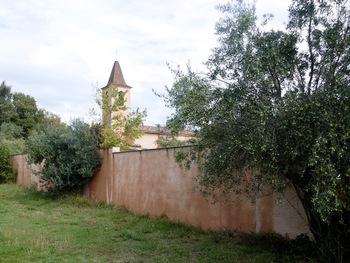 Dans l'oliveraie, le long du cimetière