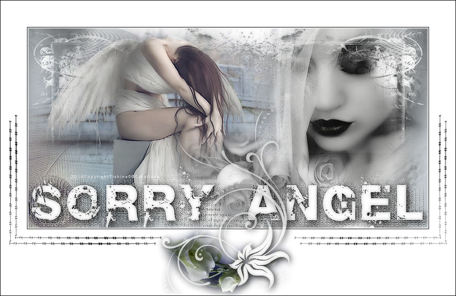 Sorry Angel