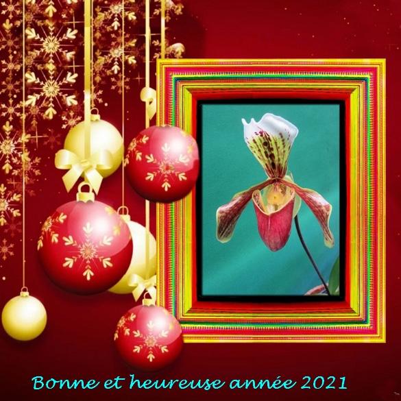 Bonne et heureuse Année 2021....
