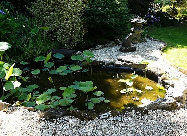 Jardin-du-Prahor-8-08-12-Jardin-zen-P1290972.JPG