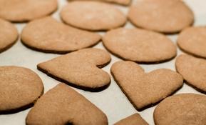 10_7_helena+wahlman-gingerbread-70