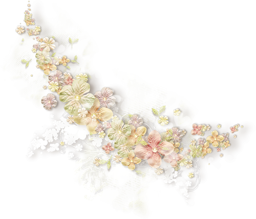 Ornements Floraux Série 14