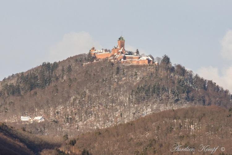Haut-Koenigsbourg (67) : Généralités Photos faites en janvier 2021