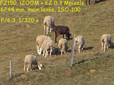 Blog de images-du-pays-des-ours : Images du Pays des Ours (et d'ailleurs ...), Test du zoom du Lumix FZ150: à 1 km ce n'est pas de la photo d'art, mais avec du 6400 mm...
