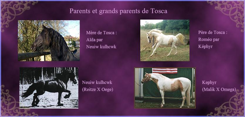 Tosca du Kan