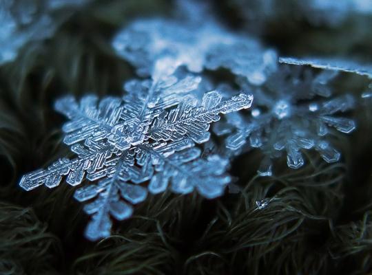 flocon-neige-9