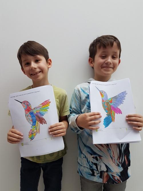 Des colibris par dizaine