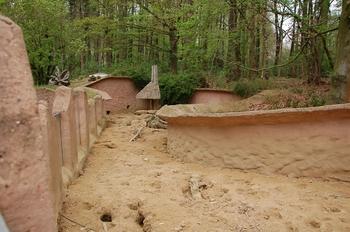 Zoo Osnabruck d50 2012 240