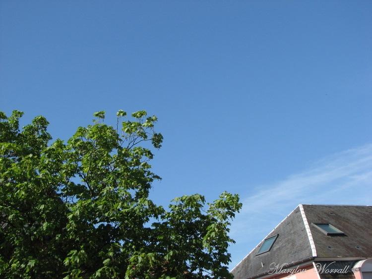 Ciel d'Alsace 414