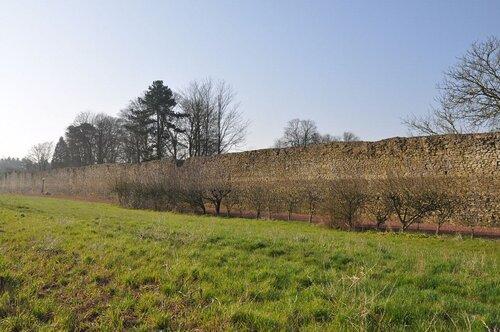 Bourg-le-Roi ( Sarthe )