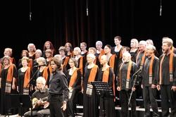 Concert de Carhaix l'album photos