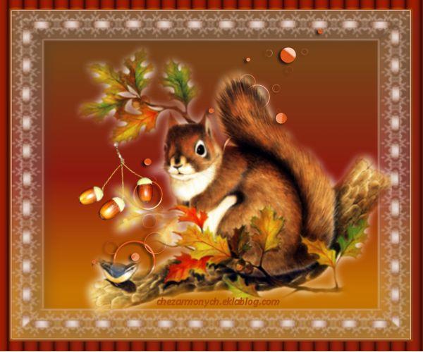cadres automne