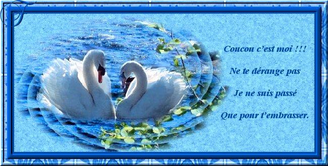 cartes postale amour