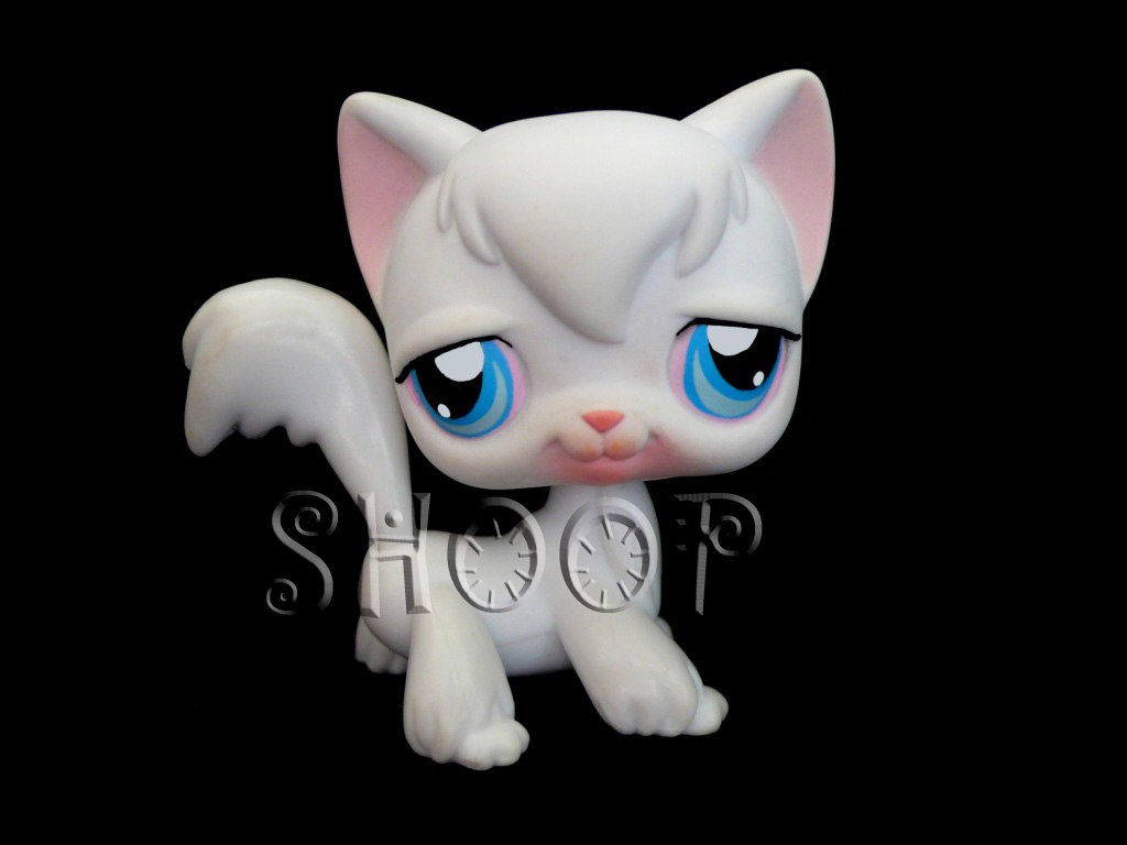 LPS 9