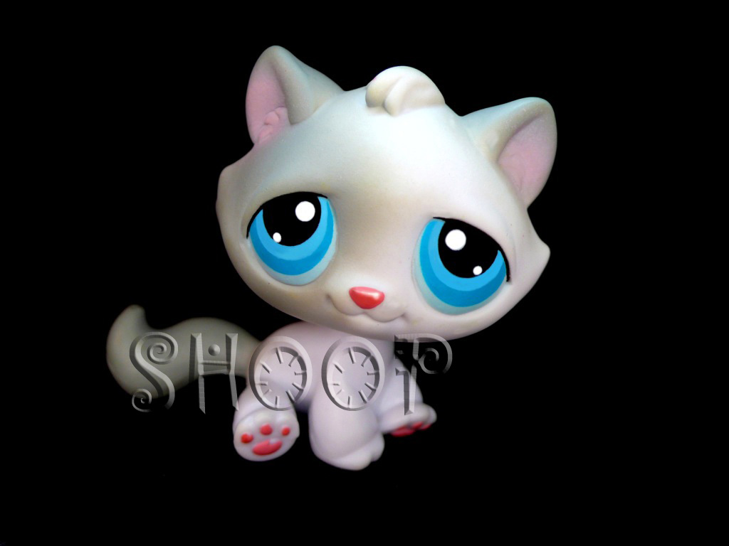 LPS 53