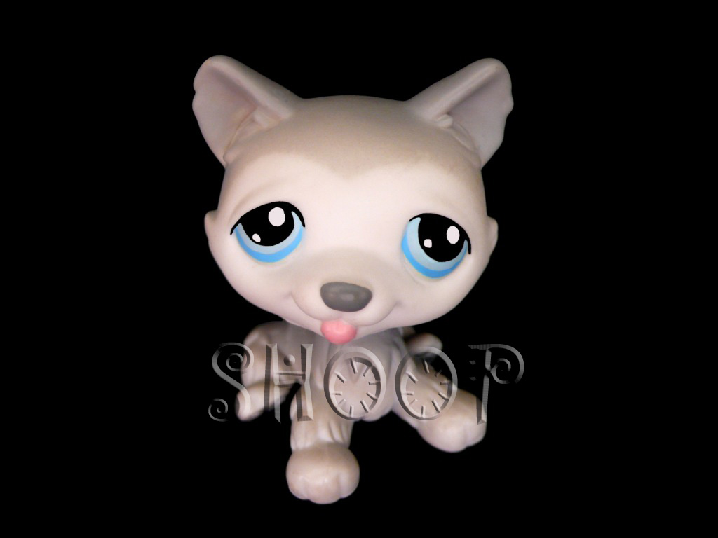 LPS 70