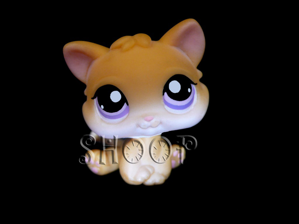 LPS 114