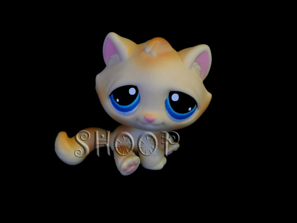 LPS 122