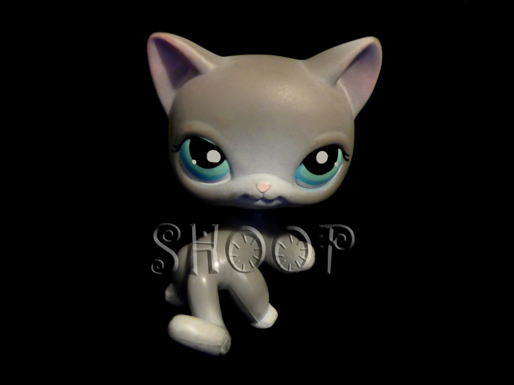 LPS 126