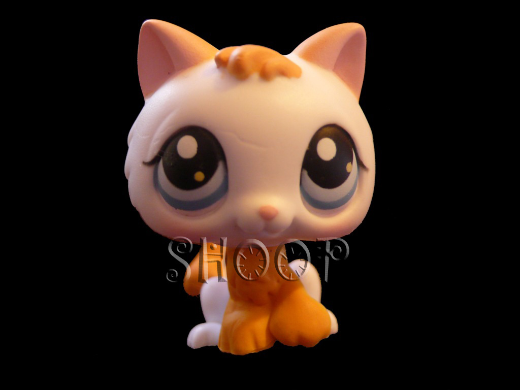 LPS 134