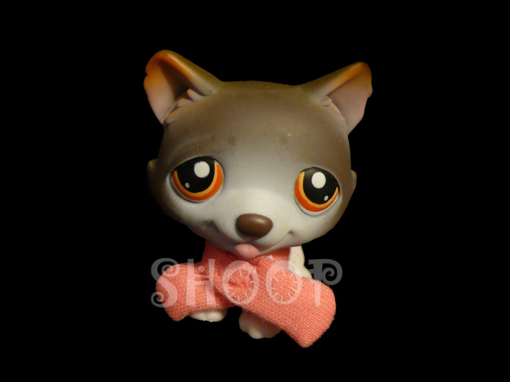 LPS 174