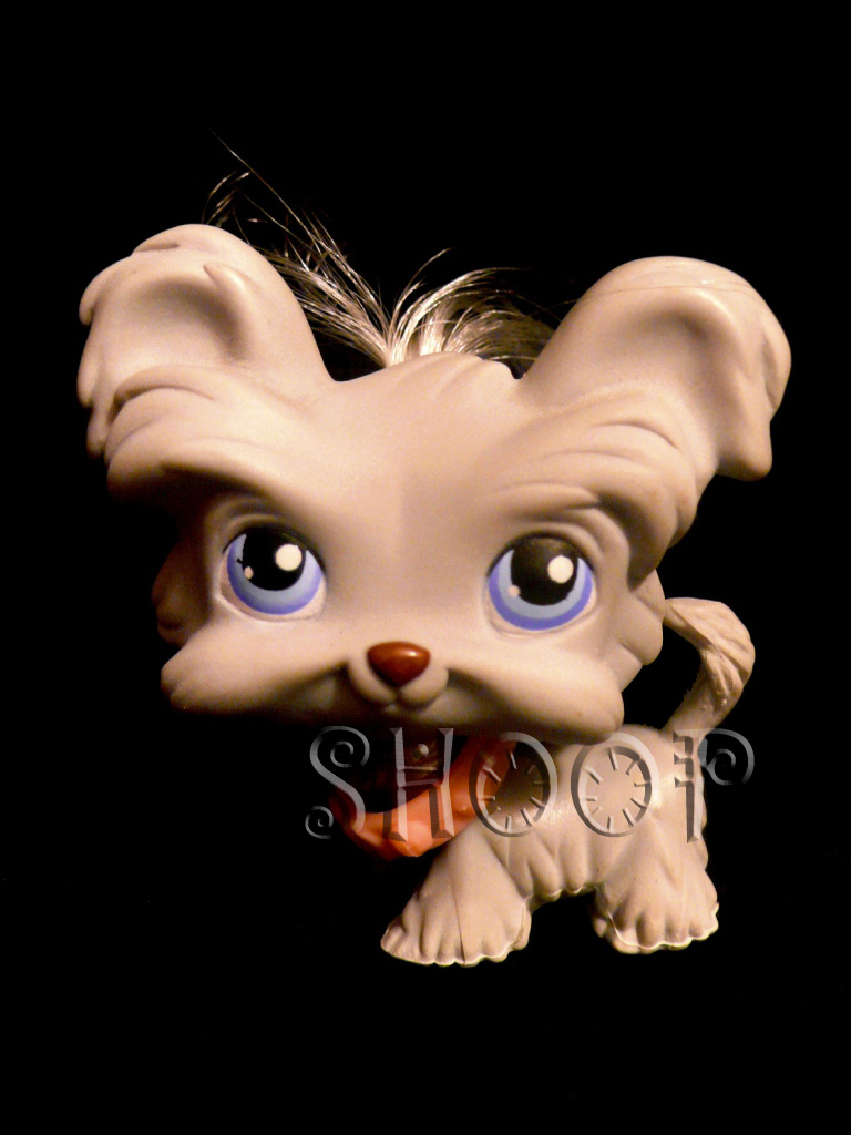 LPS 227