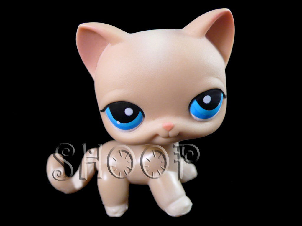 LPS 228