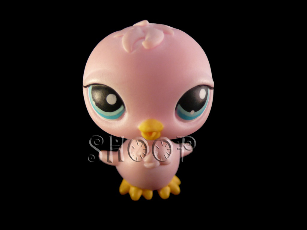 LPS 234