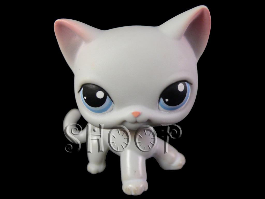 LPS 246