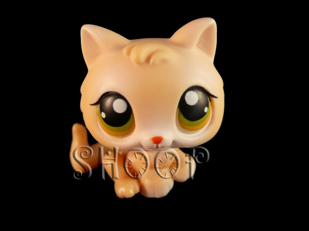 LPS 293