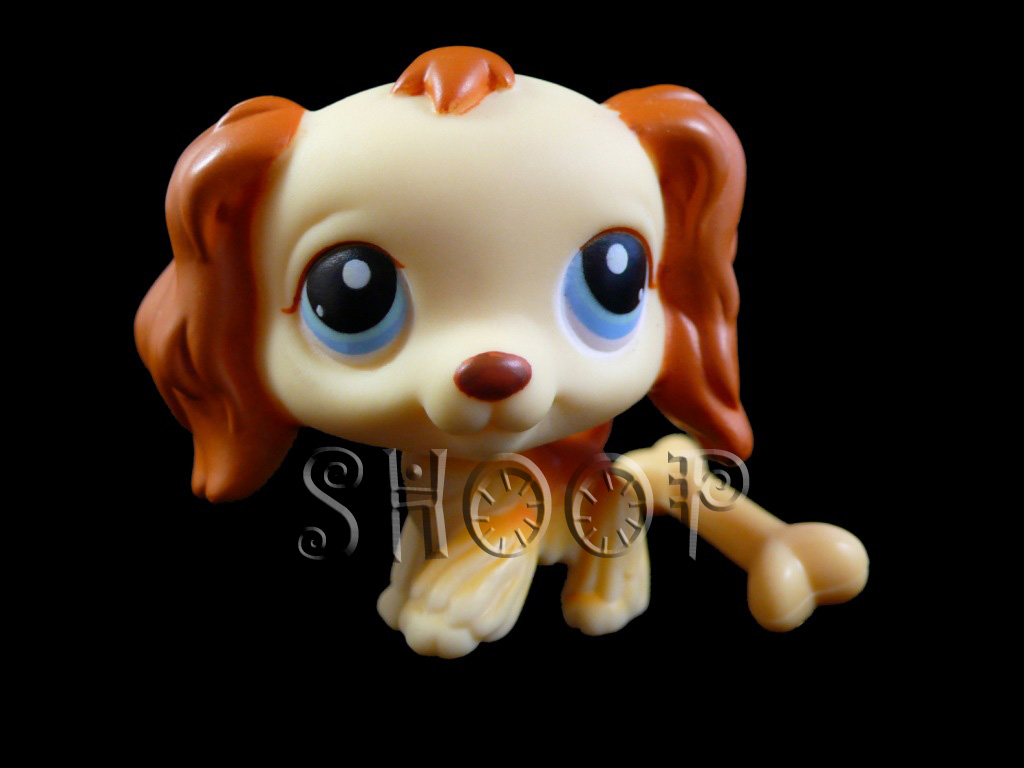 LPS 298
