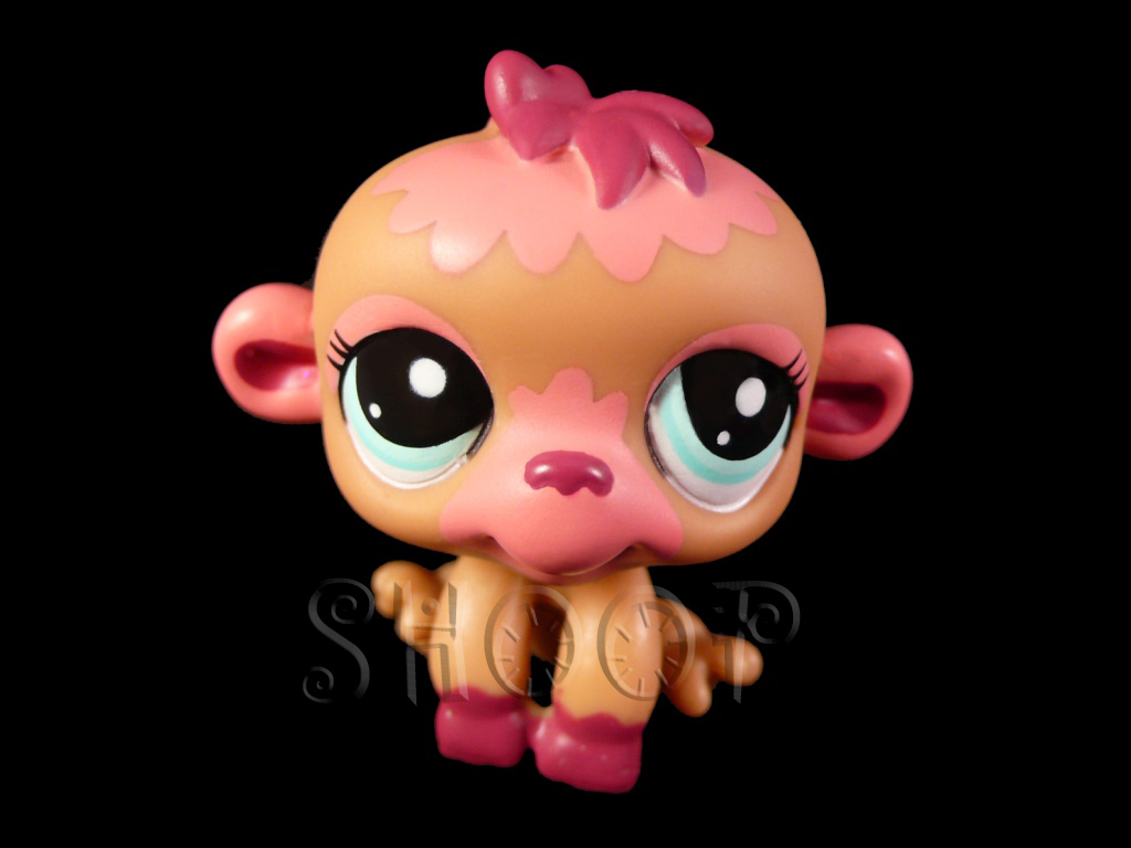 LPS 2119