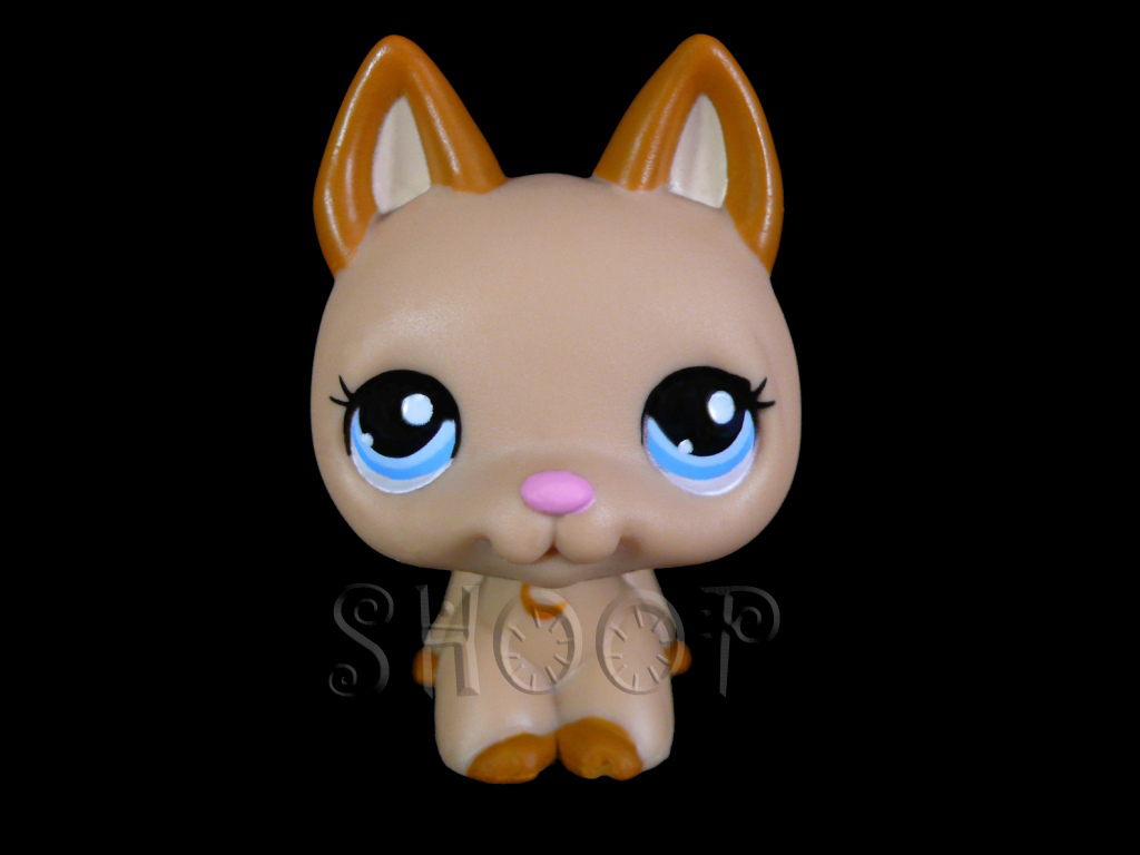 LPS 2196
