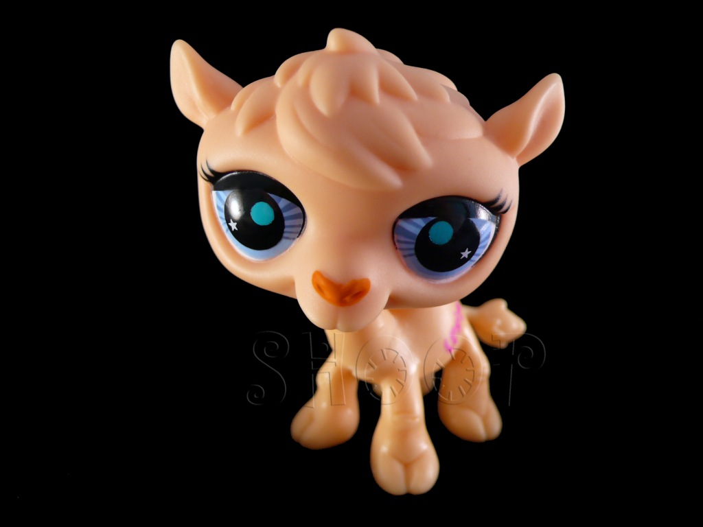 LPS 2791