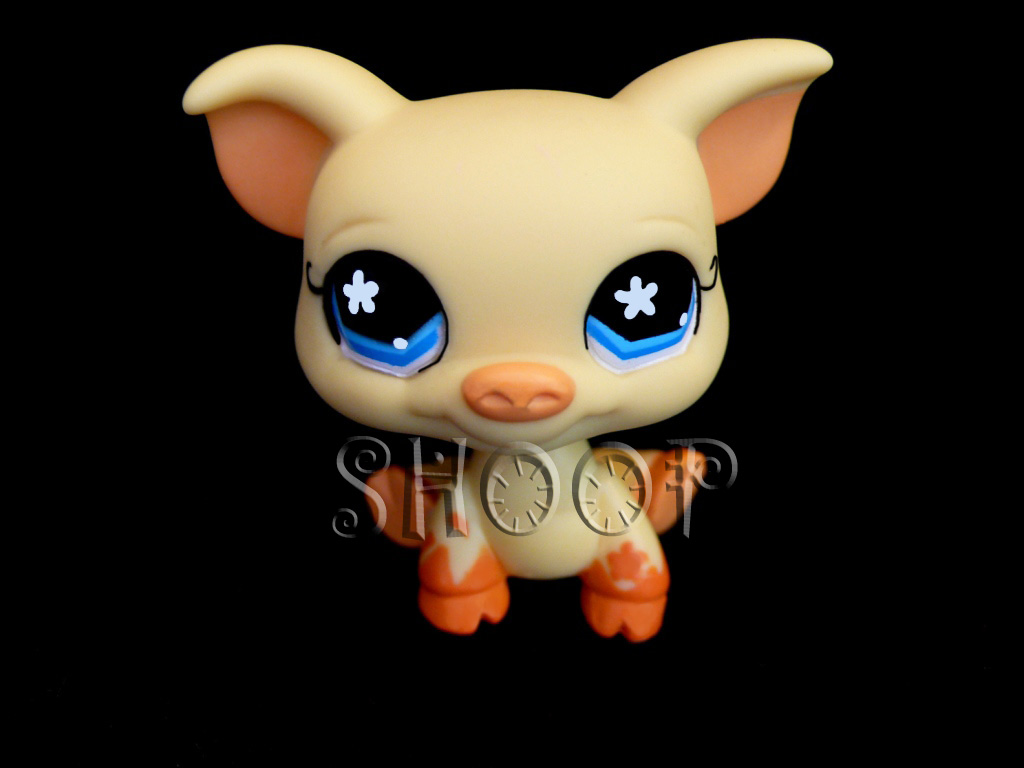 LPS 475
