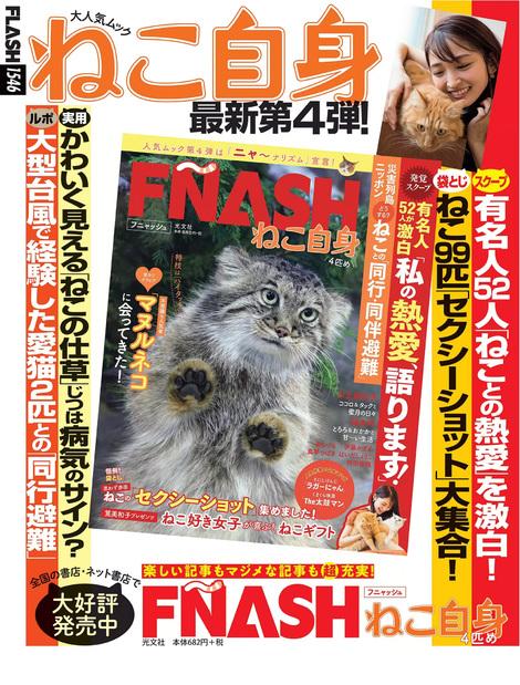Magazine : ( [Flash] - |04/02/2020| )