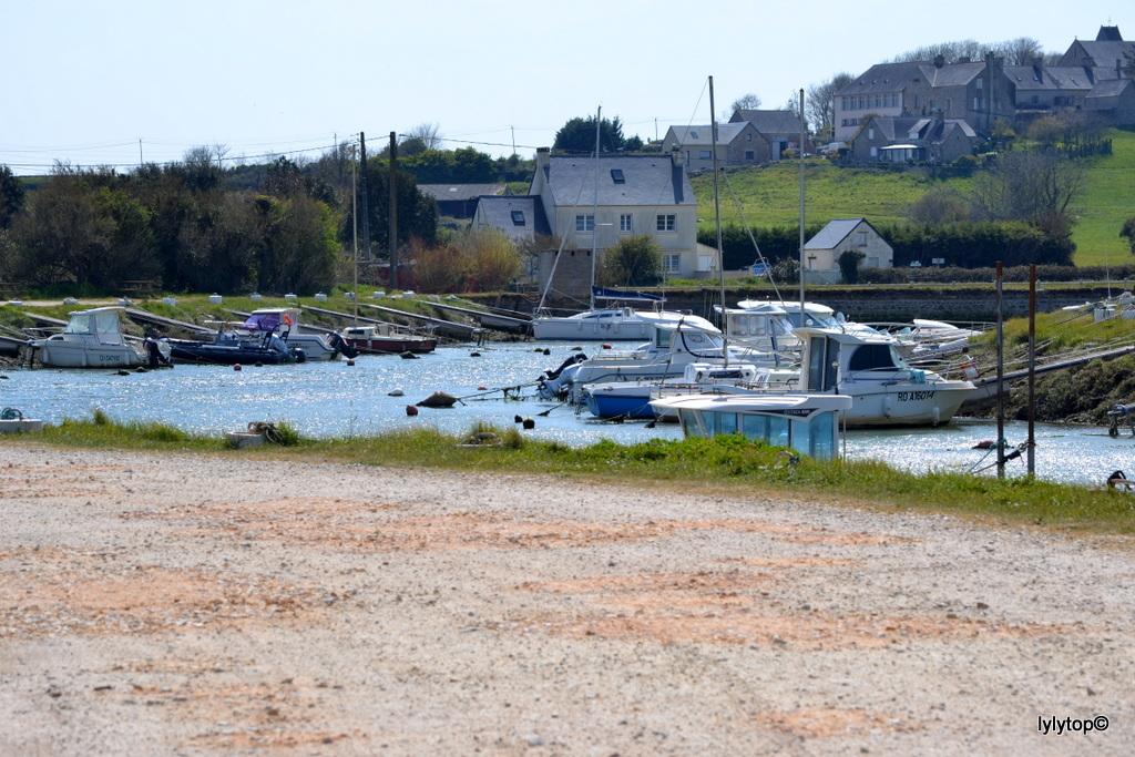 Le port de la Sinope