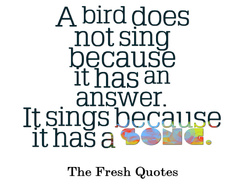 english : what is a bird song