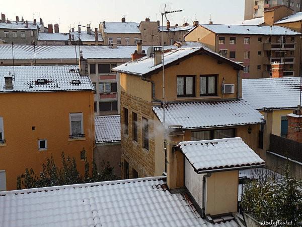 prem--neige-fleurs-055.jpg