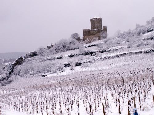 Sur la route des vins (67)