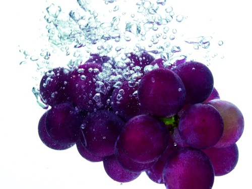 La plongée des fruits