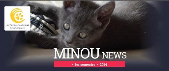 Minounews juin 2014