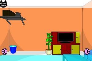 Jouer à Black cat room escape