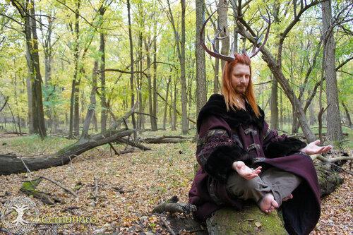 Cernunnos, roi des forêts