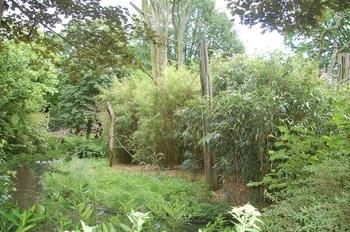 Zoo Duisburg 2012 794