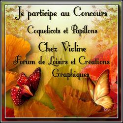 Coquelicots et papillons