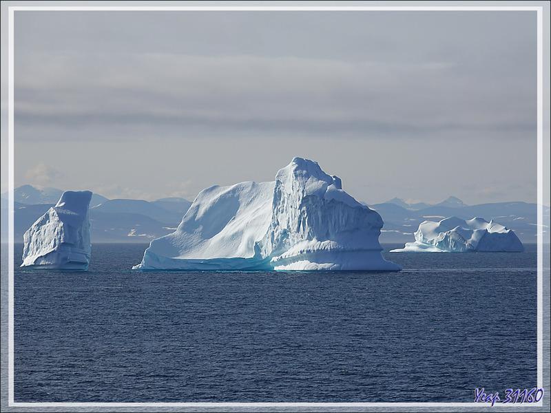 Nous croisons nos premiers icebergs - Détroit de Davis - Entre Groenland et Nunavut
