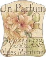 Cartonnettes - Parfum !