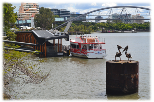 Visites aux alentours de Brisbane
