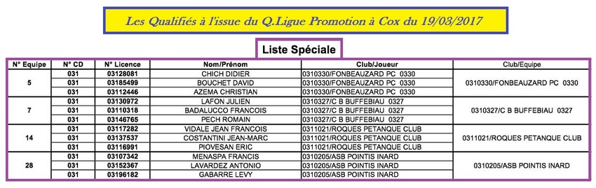 Q.Ligue Triplette Promotion